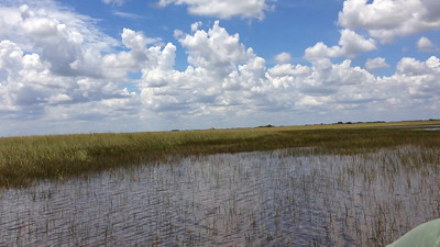 The Everglades are the lowest area of Florida - also called 'sea of grass'