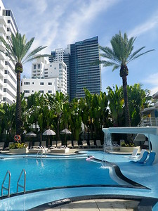 pool at 'The Raleigh' Hotel - both hotels shared the sunbeds at South Beach