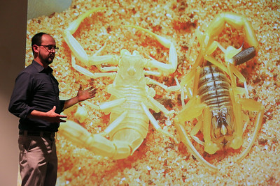 """Spring 2017 Interdisciplinary Artist in Residence, Peter Krsko, discusses how nature inspires new advanced technologies and engages his art practice in the Wisconsin Science Festival talk """"Art and Technology Inspired by Nature."""""""