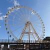 A Ferris wheel on Malaga waterfront.