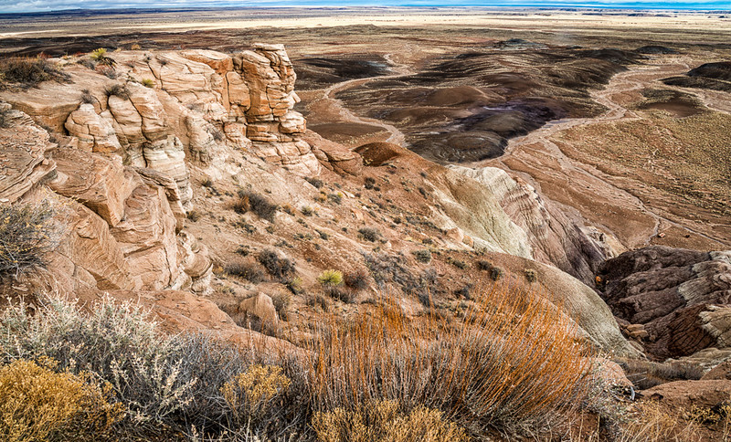 Petrified Forest17