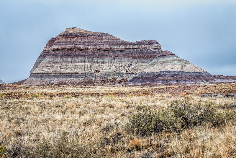 Petrified Forest6