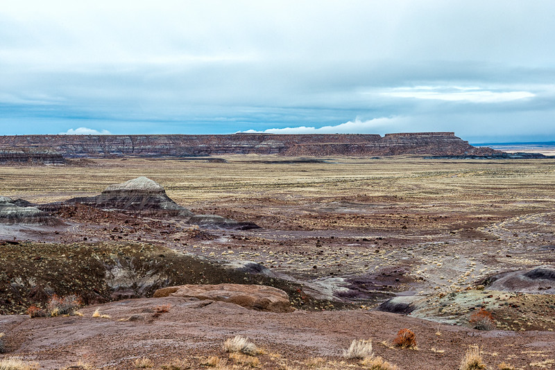 Petrified Forest9