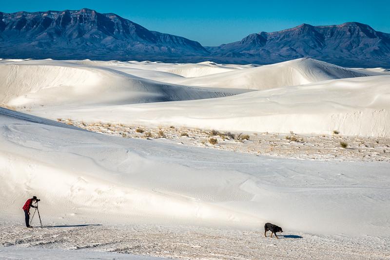 White Sands4