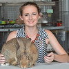 MET072816 grayless rabbit