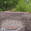 MET072816 river marker