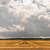 JOED VIERA/STAFF PHOTOGRAPHER-Gasport, NY- Clouds loom over a sunny field on Rochester Road.