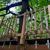 Railings with drip edges from old birch trees that we had to take down recently. Perfect fit!