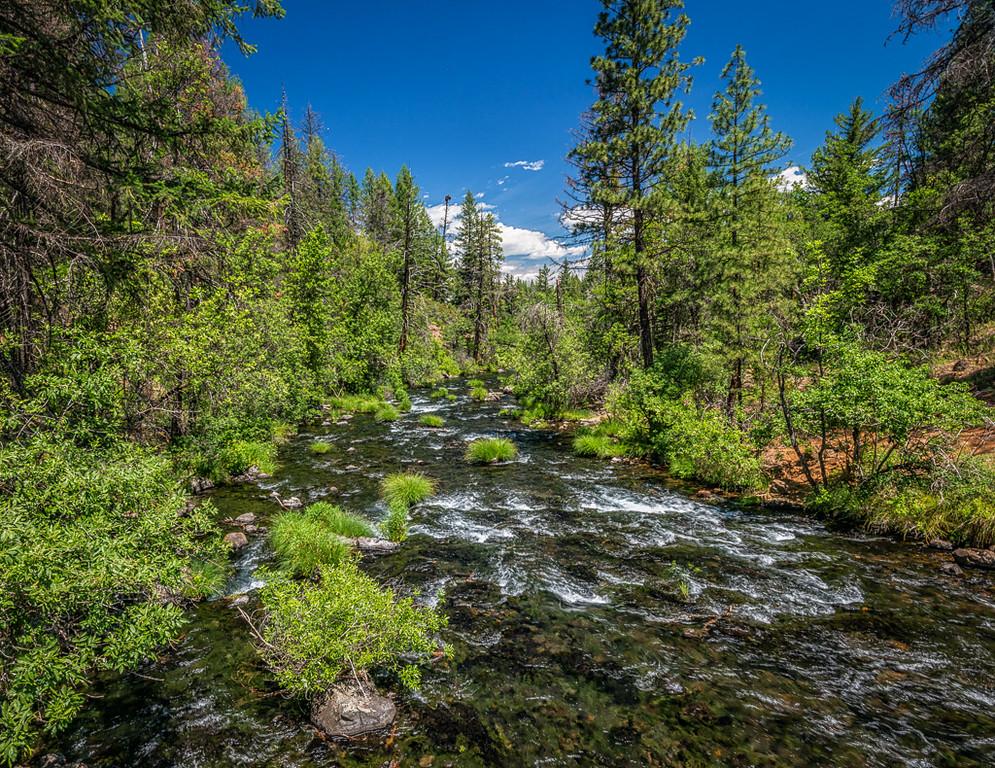 Burney Creek
