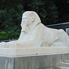 The restored Sphinxes at Crystal Palace.