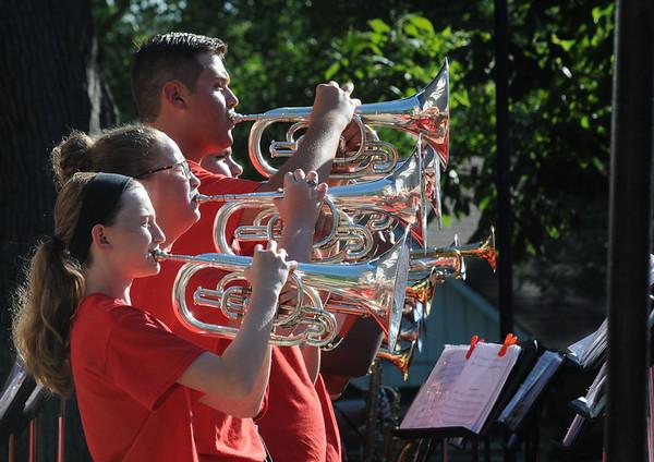MET062816brazil horns