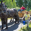 JOED VIERA/STAFF PHOTOGRAPHER-Barker, NY-  Anne Grant walks past a horse ride during Camp Happiness at Camp Kenan.