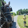 JOED VIERA/STAFF PHOTOGRAPHER-Barker, NY-  Anthony Salvo gives the camera a thumbs up after a horse ride during Camp Happiness at Camp Kenan.