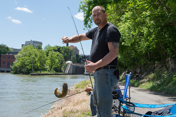 JOED VIERA/STAFF PHOTOGRAPHER-Lockport, NY-Eddy Hand pulls a Channel Cat  out of the canal.