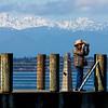 Seattle5Mar16-36