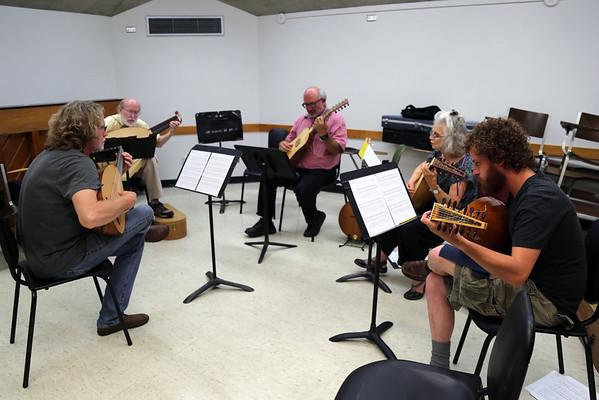 Lutes, Bandora and Cittern: Ensemble Music