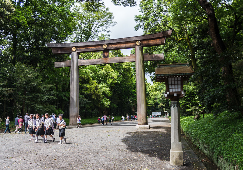 Largest wooden Torii in Japan