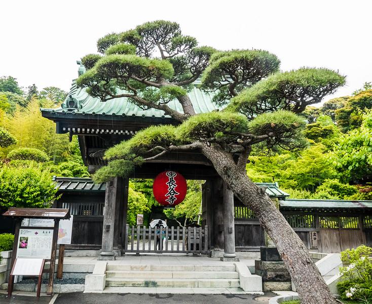 Sanmon main gate at Hase-dura
