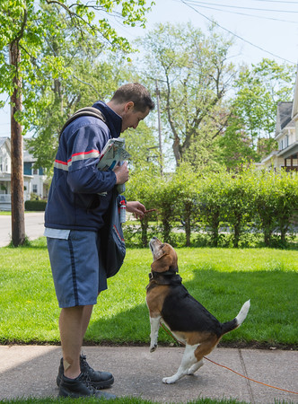 JOED VIERA/STAFF PHOTOGRAPHER-Lockport, NY- Bryan McEachon offers Jake a treat along his route on Church Street.