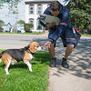 JOED VIERA/STAFF PHOTOGRAPHER-Lockport, NY- Bryan McEachon pets Jake while on his route on Church Street.