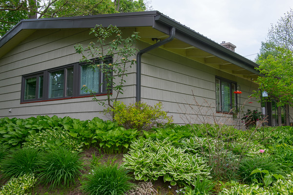 JOED VIERA/STAFF PHOTOGRAPHER-Lockport, NY-Plants bloom in front of Jayette Sinclair's home on Rydalmount Road.