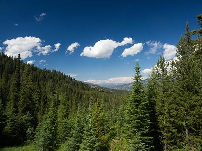 Montana - July