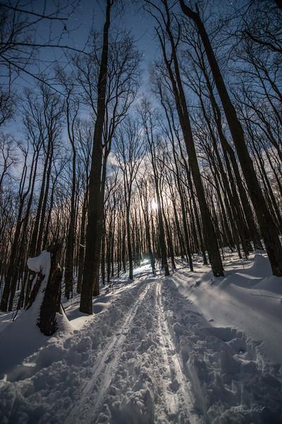 Coopers-Rocks-WV-Skiing-Winter-Storm-Jonas-17