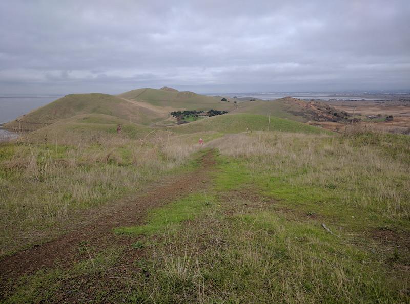 Coyote Hills, Fremont, CA