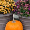 kenhodina_Wk48_Color_Blended-triad_flower pots