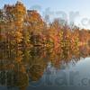 MET111216 autumn color