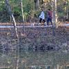 MET111216 autumn walkers
