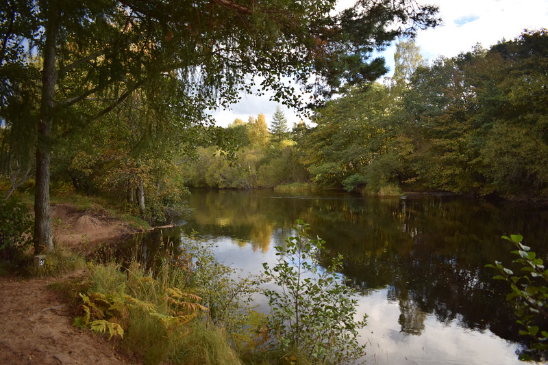 The River Spey in Aviemore.