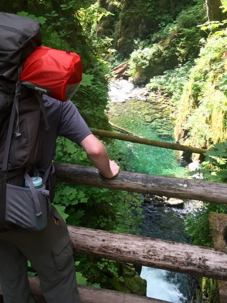 2016 Olympic National Park Trip