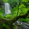 Upper Bridal Veil Falls, with a mossy covered tree