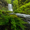 When you travel to Oregon and visit the Columbia River Gorge every year, you find yourself struggling to find new waterfalls that you haven't previously seen. Willie, Zack, and I spent a weekend in the gorge but it was Rami who suggested we try something new: Upper Bridal Veil Falls. <br /> <br /> Rami warned us that the hike would be steep, slippery, and possibly surrounded by poison-oak. We came prepared with rope, long sleeve clothes, and lots of energy. Turns out that Rami wasn't kidding: the trail was STEEEEEEP. Several times we found ourselves sliding on our tuchases down the trail. Thank goodness Zack brought his rope with him! When you get to the bottom though, the view is worth it!<br /> <br /> This waterfall is deceptive: the wide angle lens masks how big the waterfall is. It's huge. I wish I had placed a person in here to provide perspective but sadly we were all so focused on shooting the ferns and the waterfall that we forgot to run in front of the photo. I loved the way this fern unfurled in front of the waterfall, while the stream soared down next to us. The whole waterfall and stream reminded me of a bride's veil and dress, as it flows down behind her.<br /> <br /> Nikon D800 w/Nikkor 14-24mm f/2.8 and Wonderpano Circular Polarizer:<br /> 15mm, f/5.6, 1/50 sec, ISO 640