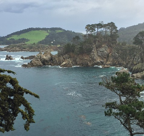 POINT LOBOS: MARCH 5, 2016