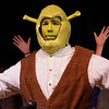 Shrek PVIS Feb16--15