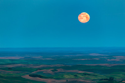 Almost Full Moon, Steptoe Butte, Palouse
