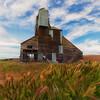 Old Palouse Grain elevator