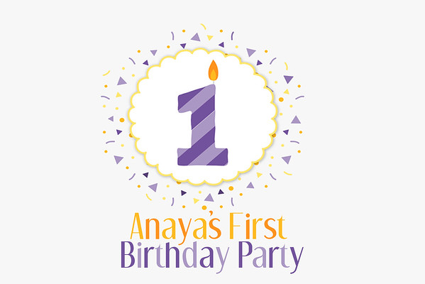 Ananya's First Birthday Party 2016-09-04