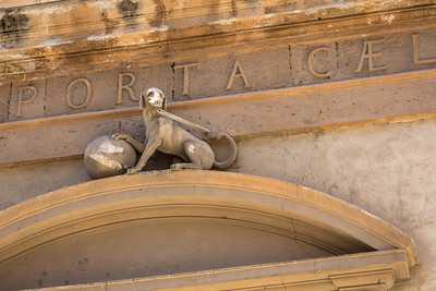 Detail of a dog above the front door to the Chiesa di San Mamiliano (ex Santa Cita)