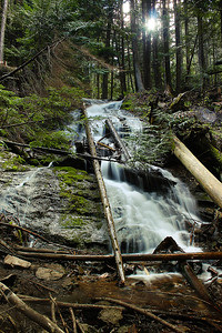 Liberty Lake Loop Trail...