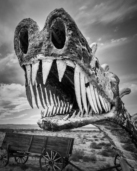 Roadside Dragon