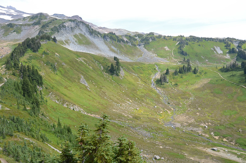 Paradise Valley, Edith Creek, switchbacks leading toward Paradise Glacier Trail, from Alta Vista, elevation 5,950'.