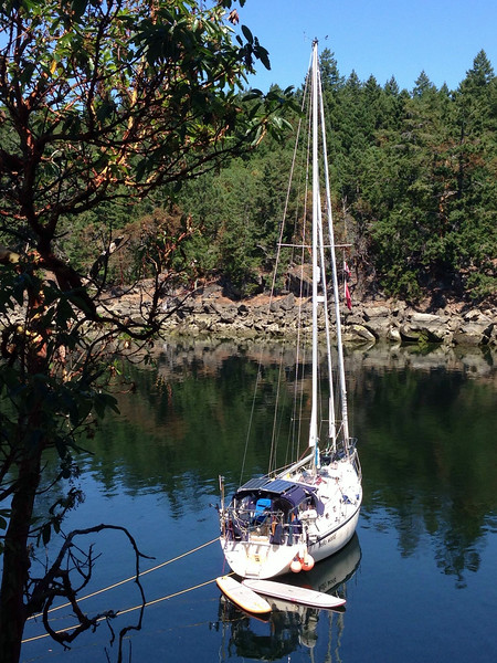 Stern tied in Wallace Cove in the Gulf Islands of British Columbia