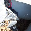 Backup 44lb Spade anchor