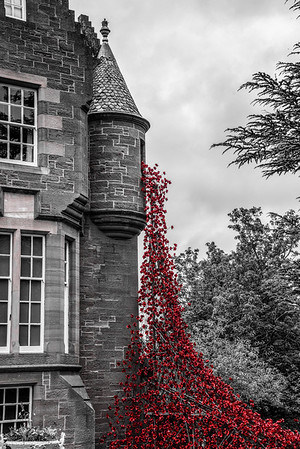 The Blackwatch, Weeping Window 25/08/2016