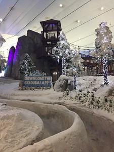 Ski Dubai - Bridget St. Clair