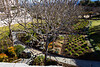 Serpentine Gardens at Getty Museum