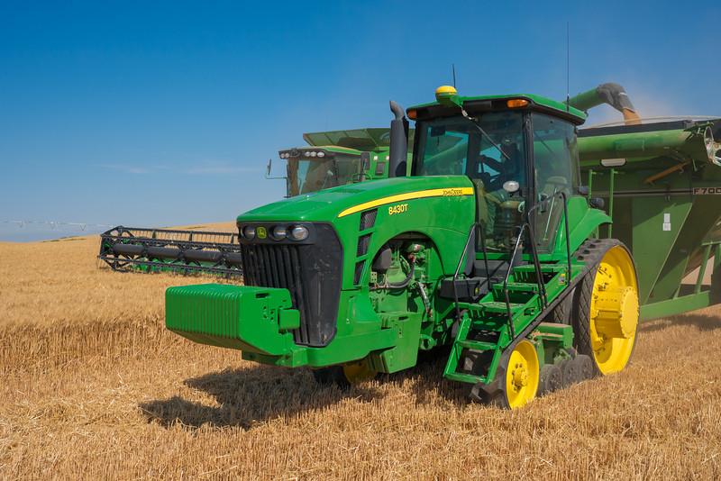 Webster Wheat Harvest 2016-9